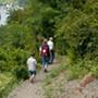Buchsbaum-Wanderweg